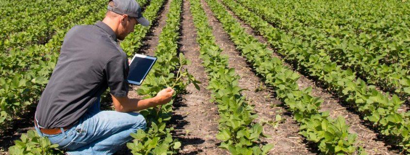 ¿Tiene sentido un curso de formación online sobre un sector tradicional?